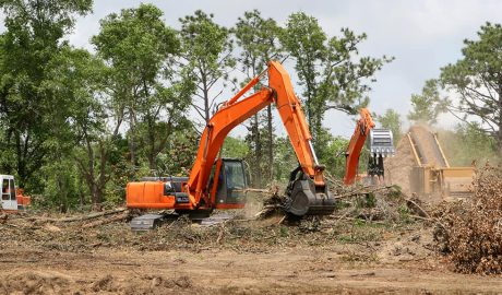 Tree Land Clearing Service in Pittsburgh, PA