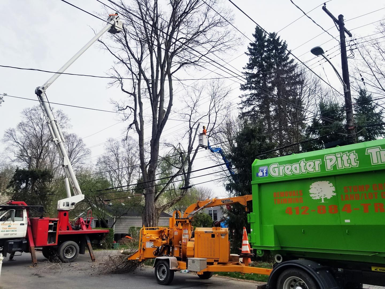 greater-pitt-tree-service-llc-trucks-slide